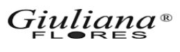 aplicativo personalizado giulianaflores